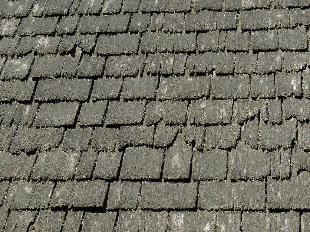 How to Remove Algae & Moss From Your Overland Park Roof