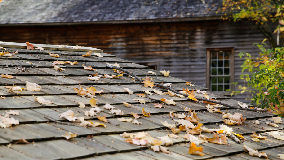 Getting Your Roof Ready for Fall with a Residential Roofing Contractor in Overland Park
